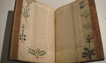 Αρχαίες και σύγχρονες εφαρμογές ελληνικών βοτάνων